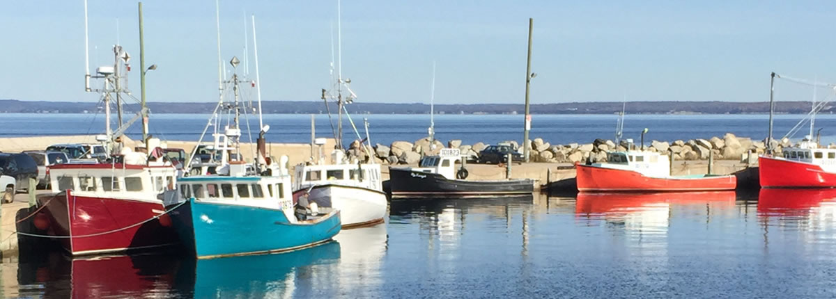 fishing vessels on the water